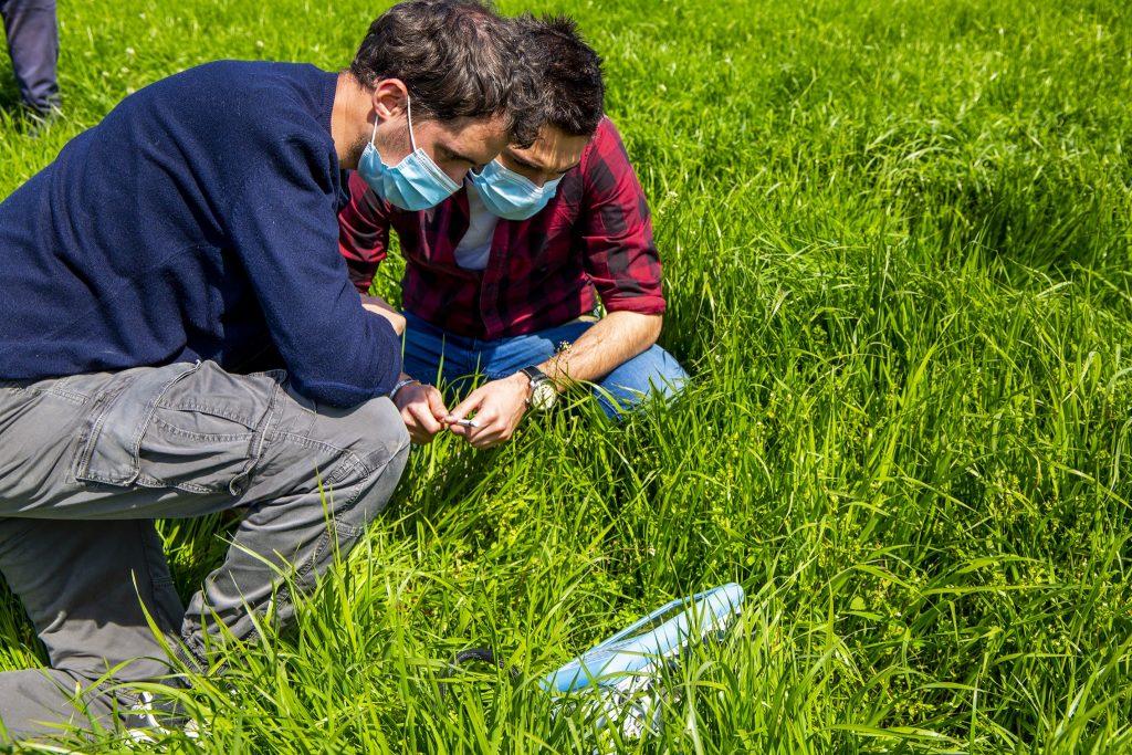 Progetto Agricoltura Simbiotica - DISAA